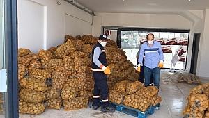 Gebze'de 150 ton patates dağıtılacak!