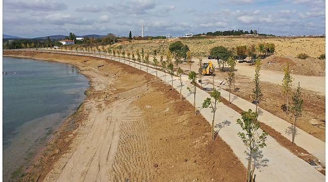 Balyanoz Koyu'na 350 adet ağaç dikildi